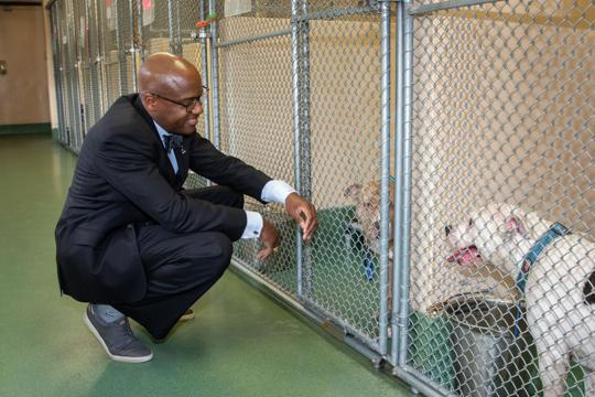 Supervisor Angry at Animal Shelter